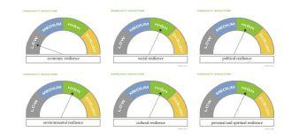 Community reslience indicators