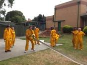 Teenagers in an Emergency program